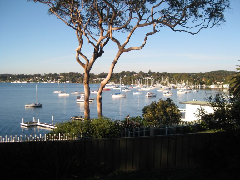 pest control inspections around the lake macquarie at Toronto
