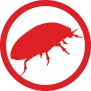 control fleas with safe chemicals